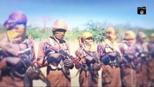 Da Duminsa:Boko Haram ta saki Sabon Bidiyo inda ta nuna tulin makamai da kwararrun Maharba